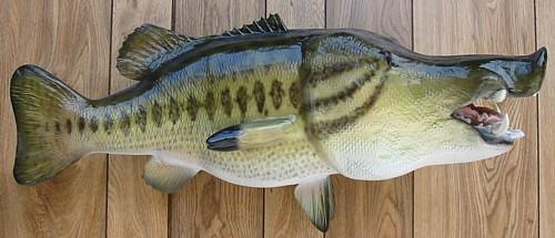 Unique Species Florida Fish Mounts Florida Taxidermy